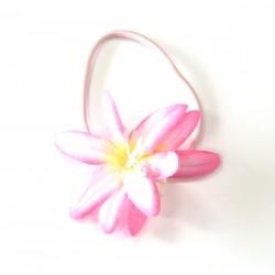 Plaukų gumytės rožinės